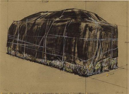 Сериграфия Christo -  PACKED HAY