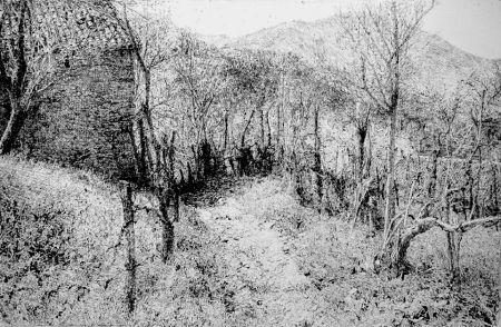 Офорт Barbisan - Paesaggio in collina