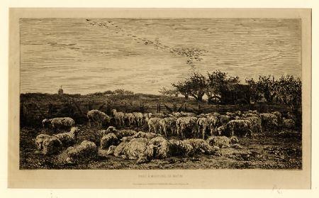 Гравюра Daubigny - Parc à moutons:  le matin, in
