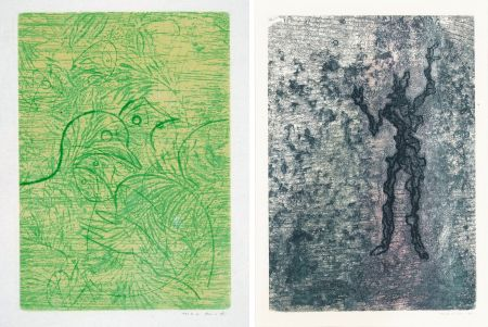 Офорт И Аквитанта Ernst - PAROLES PEINTES (1959) 2 GRAVURES ORIGINALES DE MAX ERNST (10 gravures originales de Max Ernst, Jacques Hérold, Wifredo Lam, Sébastian Matta et DorotheaTanning. Poèmes d'Alain Bosquet).