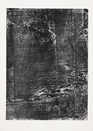 Литография Dubuffet - Paysage japonais