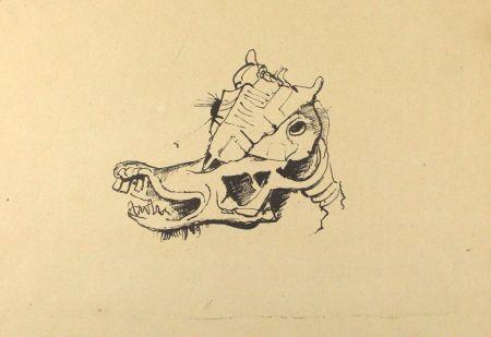 Литография Hofer - Pferdeschädel / Horse Skull
