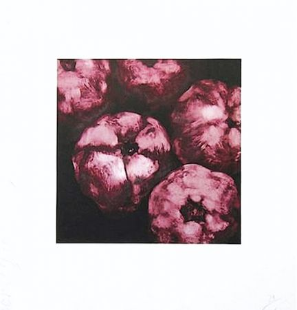 Сериграфия Sultan - Pomegranates
