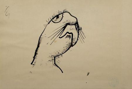 Нет Никаких Технических Hofer - Robbe (Seal)