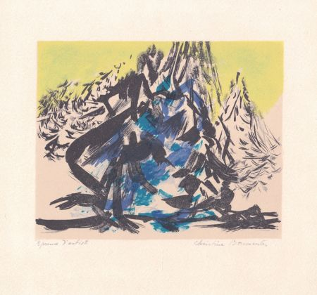 Литография Boumeester - Sans titre [Montagne]