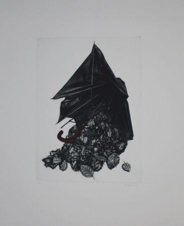 Mezzotint Ebert - Schirm und Blättern