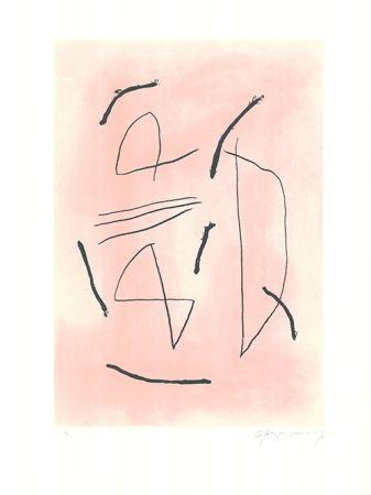 Офорт И Аквитанта Ràfols Casamada - Signe i color 4
