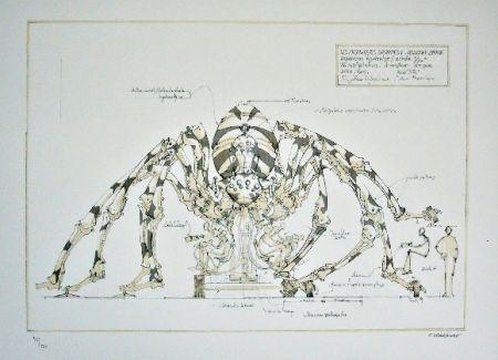 Литография Delarozière - Spider - mecanique savante - Liverpool  La machine