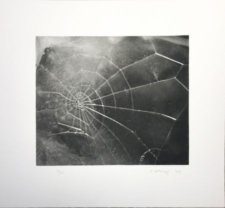 Сериграфия Celmins - Spider Web