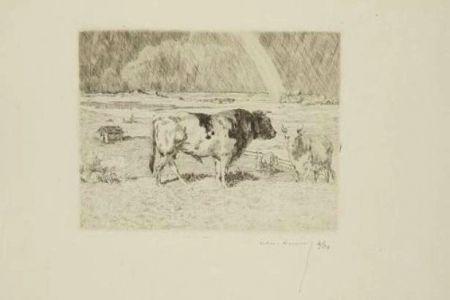 Гравюра Lunois - Taureau dans un pré / Bull in a Meadow