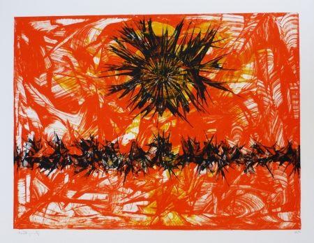 Литография Ernst - Terra Incognita 12