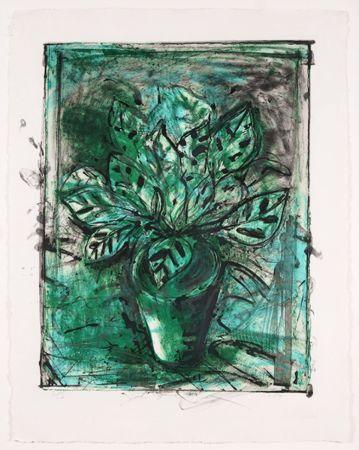 Литография Dine - The Jerusalem Plant, No 8