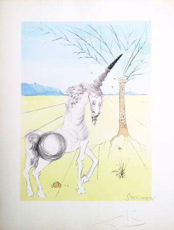 Литография Dali - The Twelve Tribes of Israel/  Joseph (23)