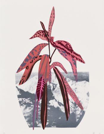Многоэкземплярное Произведение Wood - Untitled (Red)