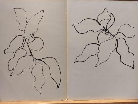 Иллюстрированная Книга Matisse - Vence