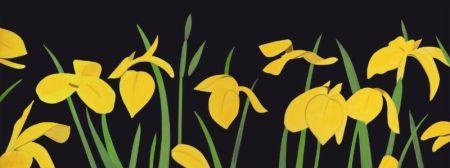 Многоэкземплярное Произведение Katz - Yellow Flags